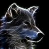Wolfmesa