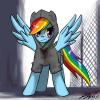 Portrait de Pony Stark